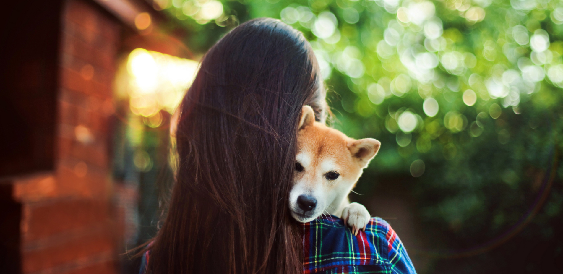 Emotional Support Animal Laws in Delaware